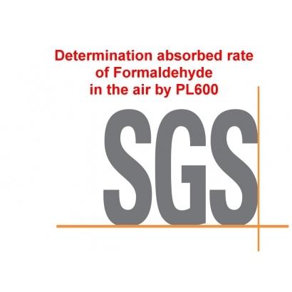 SGS1.jpg